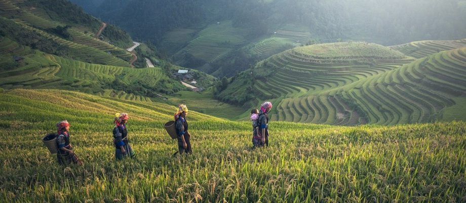 Non-Touristy Things to do in Bali