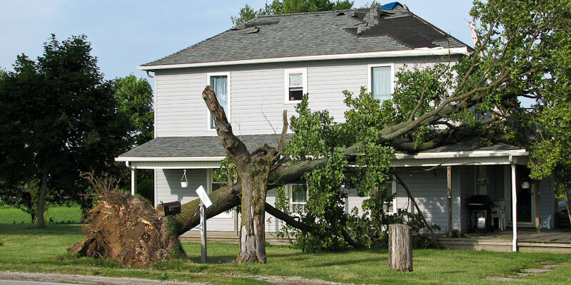 The Unique Impacts of High Winds on the Home